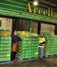 Arcella Banana Company